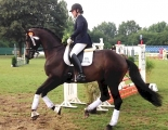 Sir Easy in Hannover 2013_1