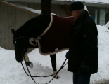 2010-12 Winterfee