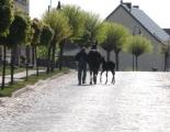 2012-05 Winterfee-2